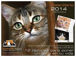Calendario 2014 Barcelona gat i gos - sobremesa