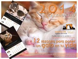 Calendario 2014 Barcelona gat i gos - mural